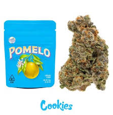 Pomelo Cookies Strain
